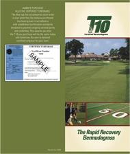 t-10-brochures-1