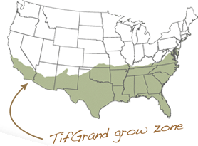 TifGrand Growzone