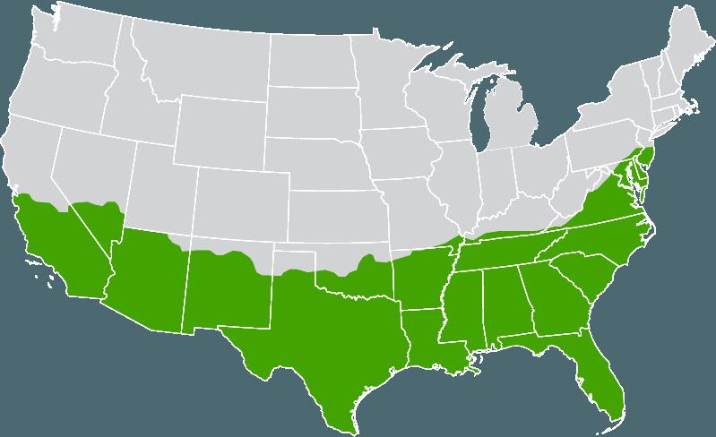 zone map-trinity