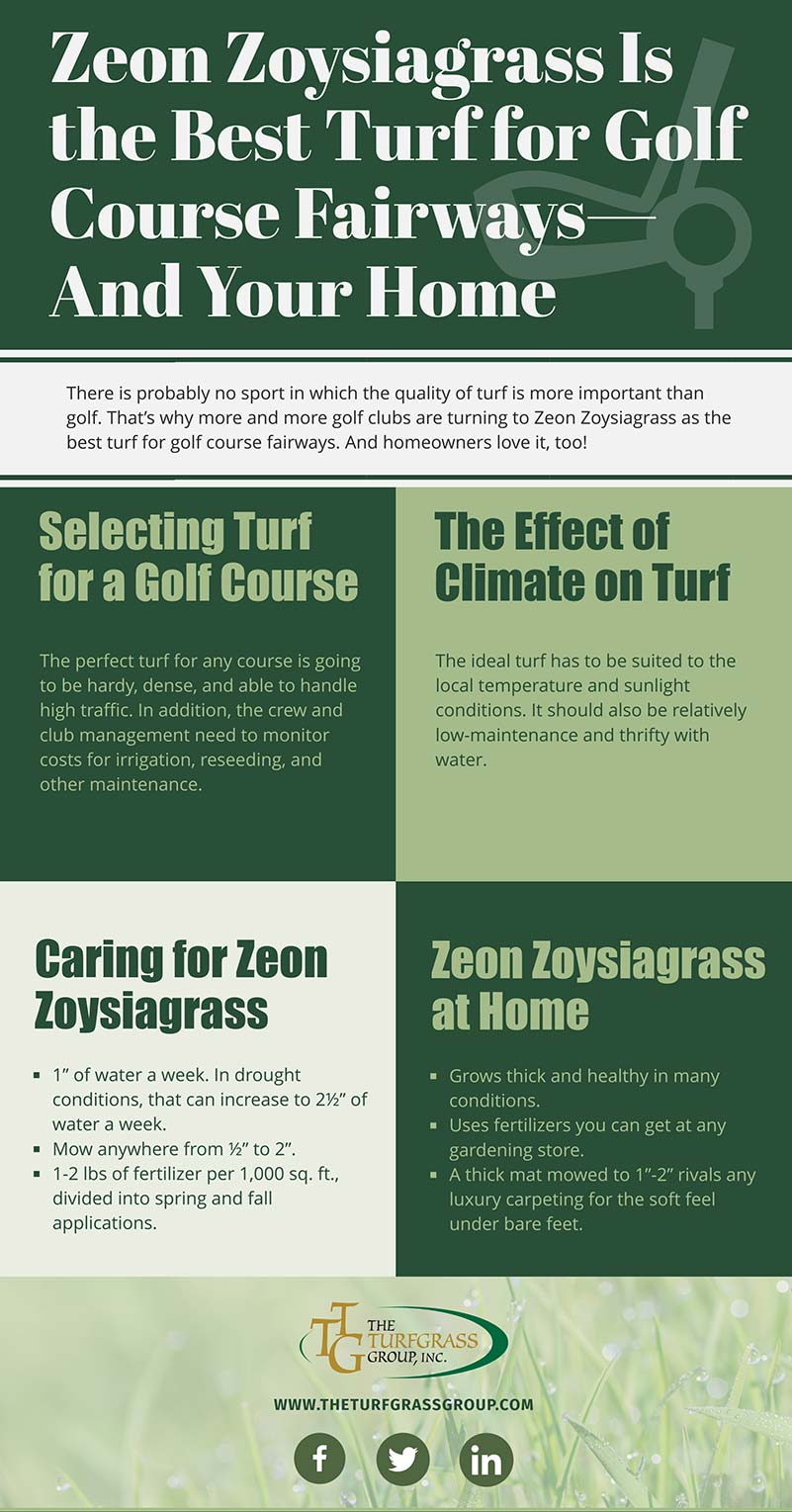 Why Zeon Zoysiagrass Is the Best Turf for Golf Course Fairways—And Your Home [infographic]