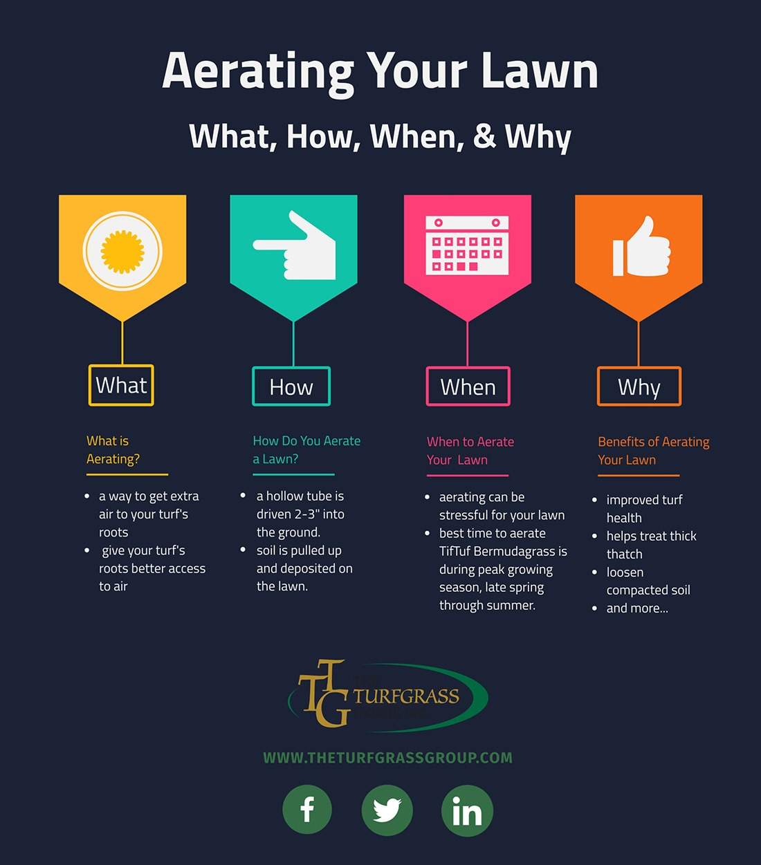 How to Aerate Your TifTuf Bermudagrass Lawn [infographic]