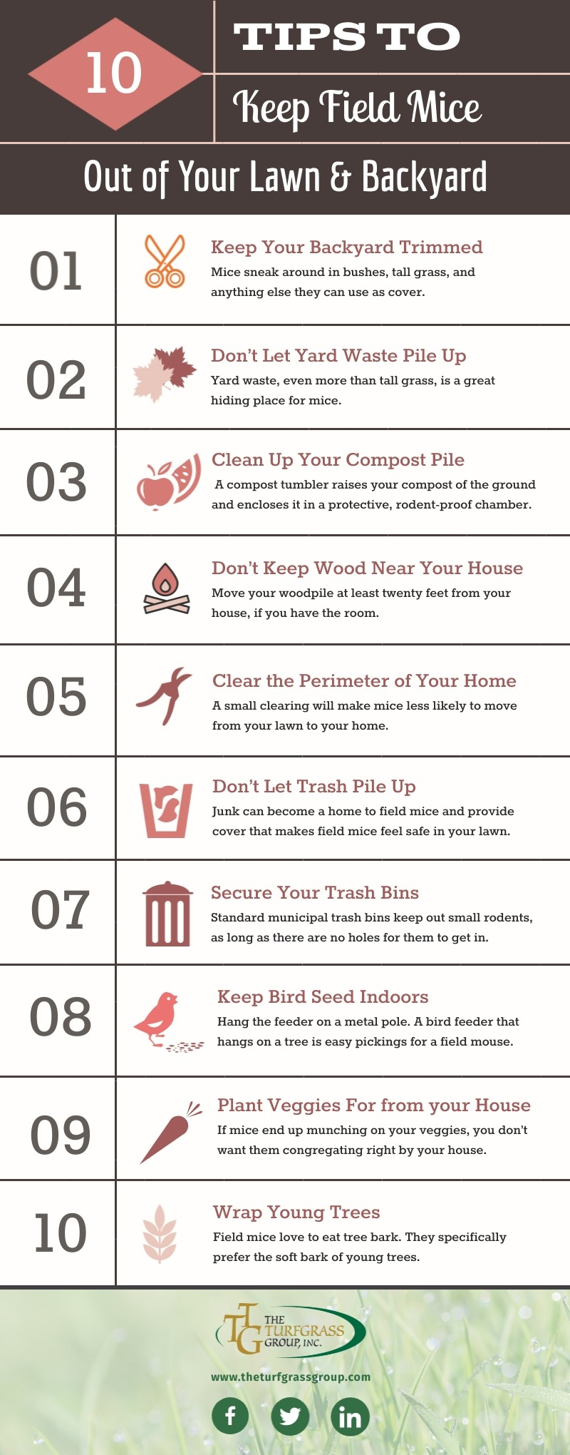 How to Keep Field Mice Out of Your Lawn [infographic]