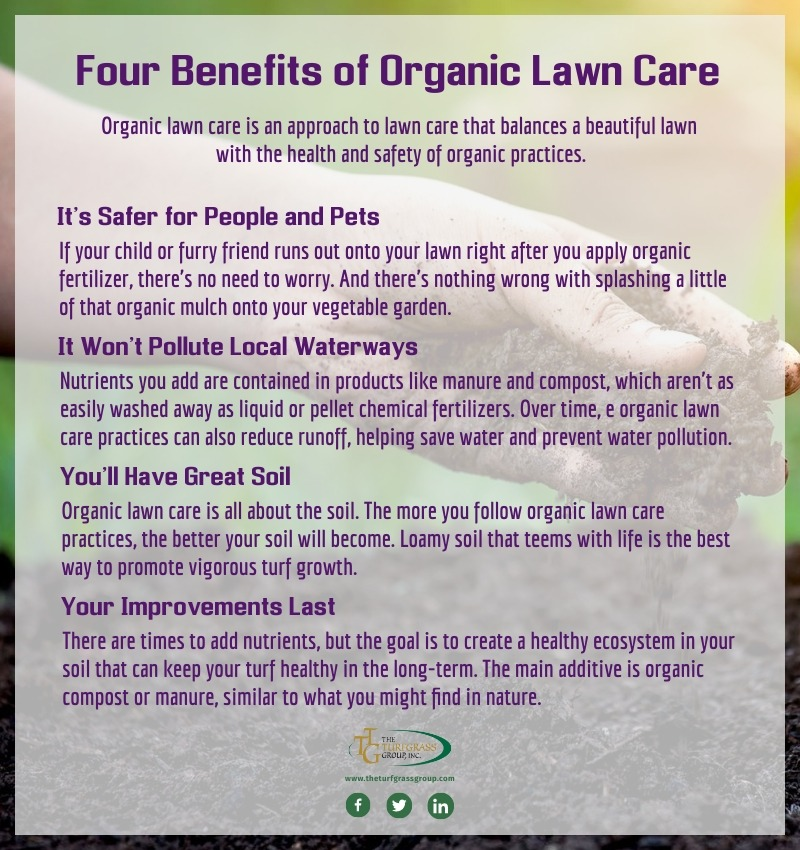 What is Organic Lawn Care [infographic]