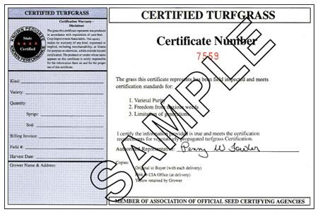 certified trufgrass example certificaate