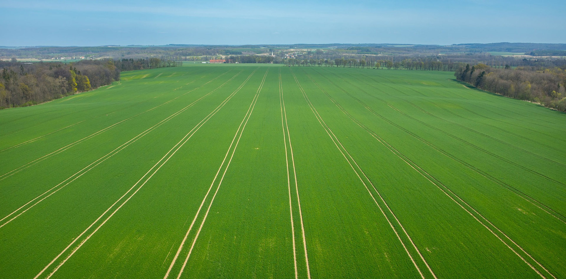 The Turfgrass Group aerial view of grower's field
