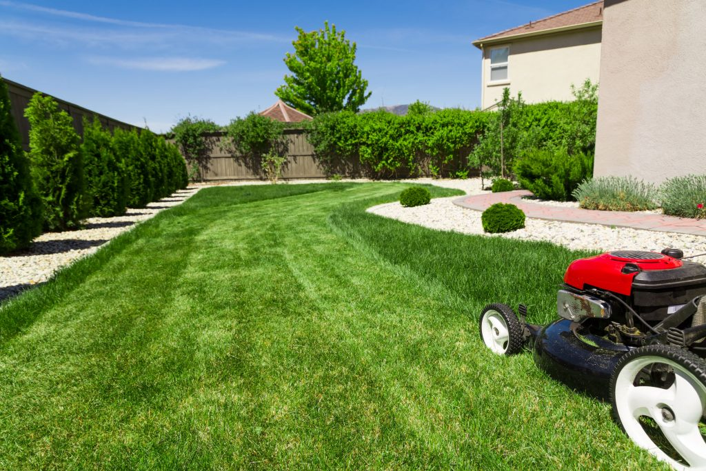 63556896 - lawn mower on green lawn
