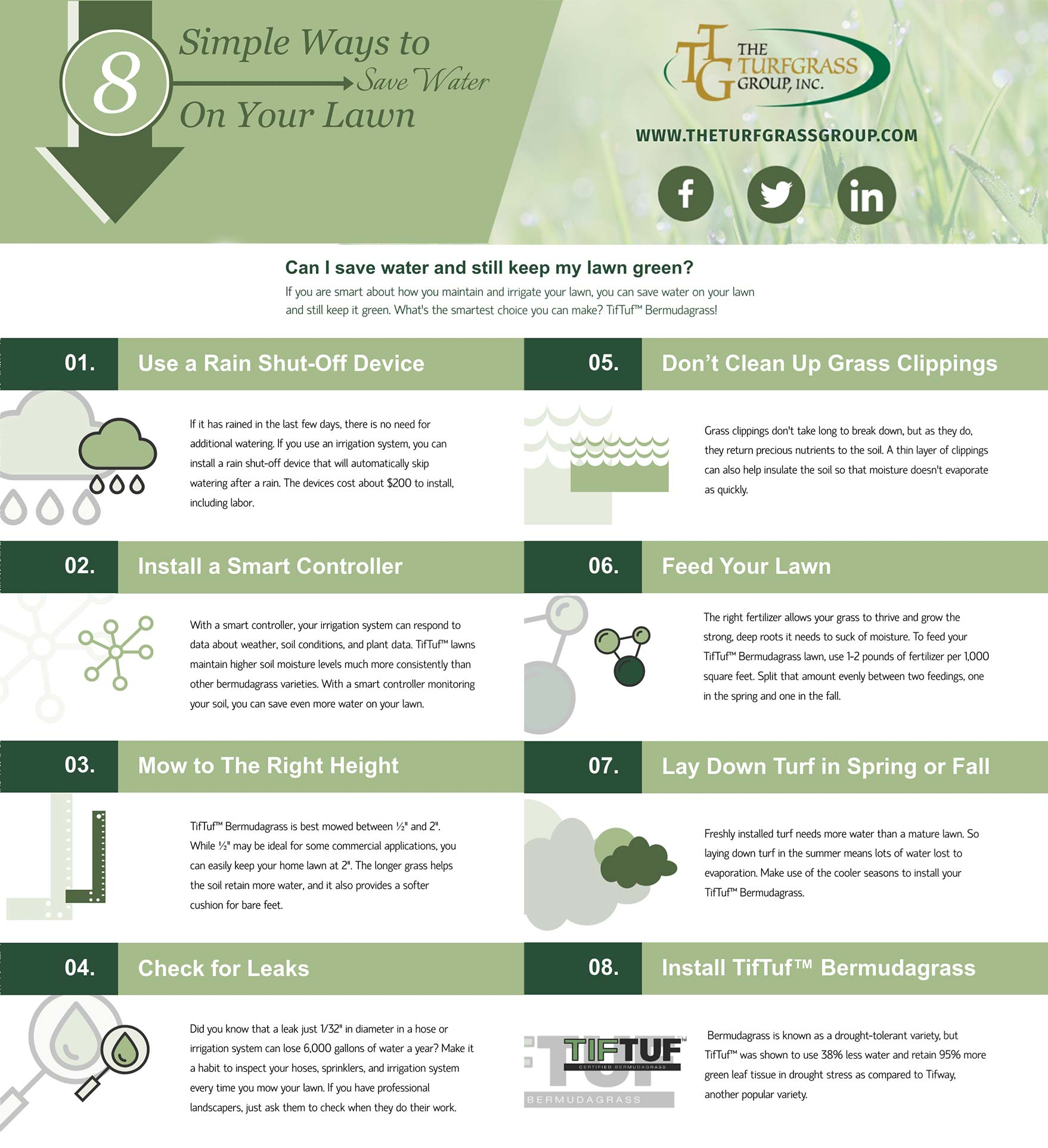 8 Simple Ways to Save Water on Your Lawn [infographic]