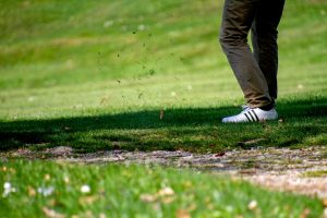Why Zeon Zoysiagrass Is the Best Turf for Golf Course Fairways—And Your Home