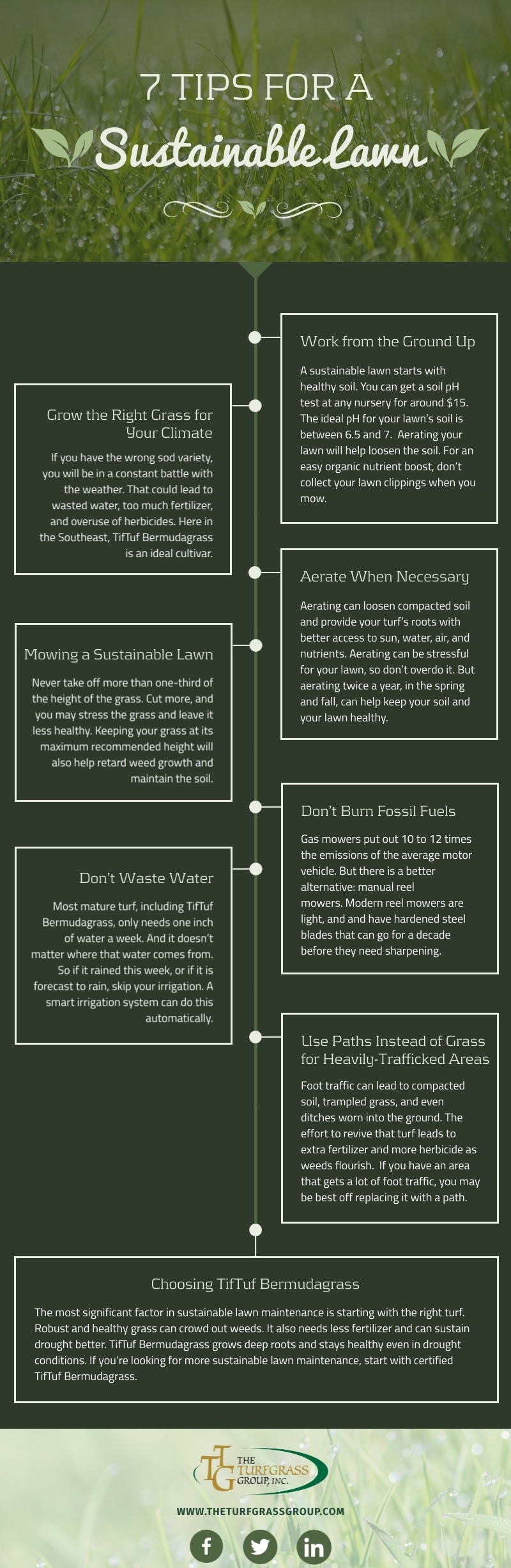 7 Tips for a Sustainable Lawn [infographic]