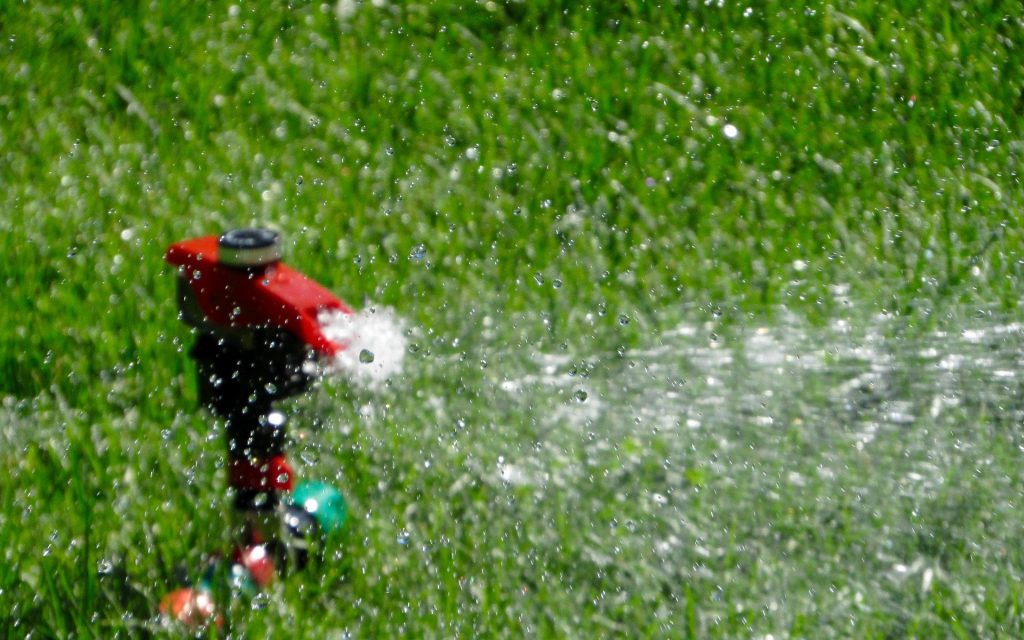 How to Get the Most Out of Watering Your Lawn