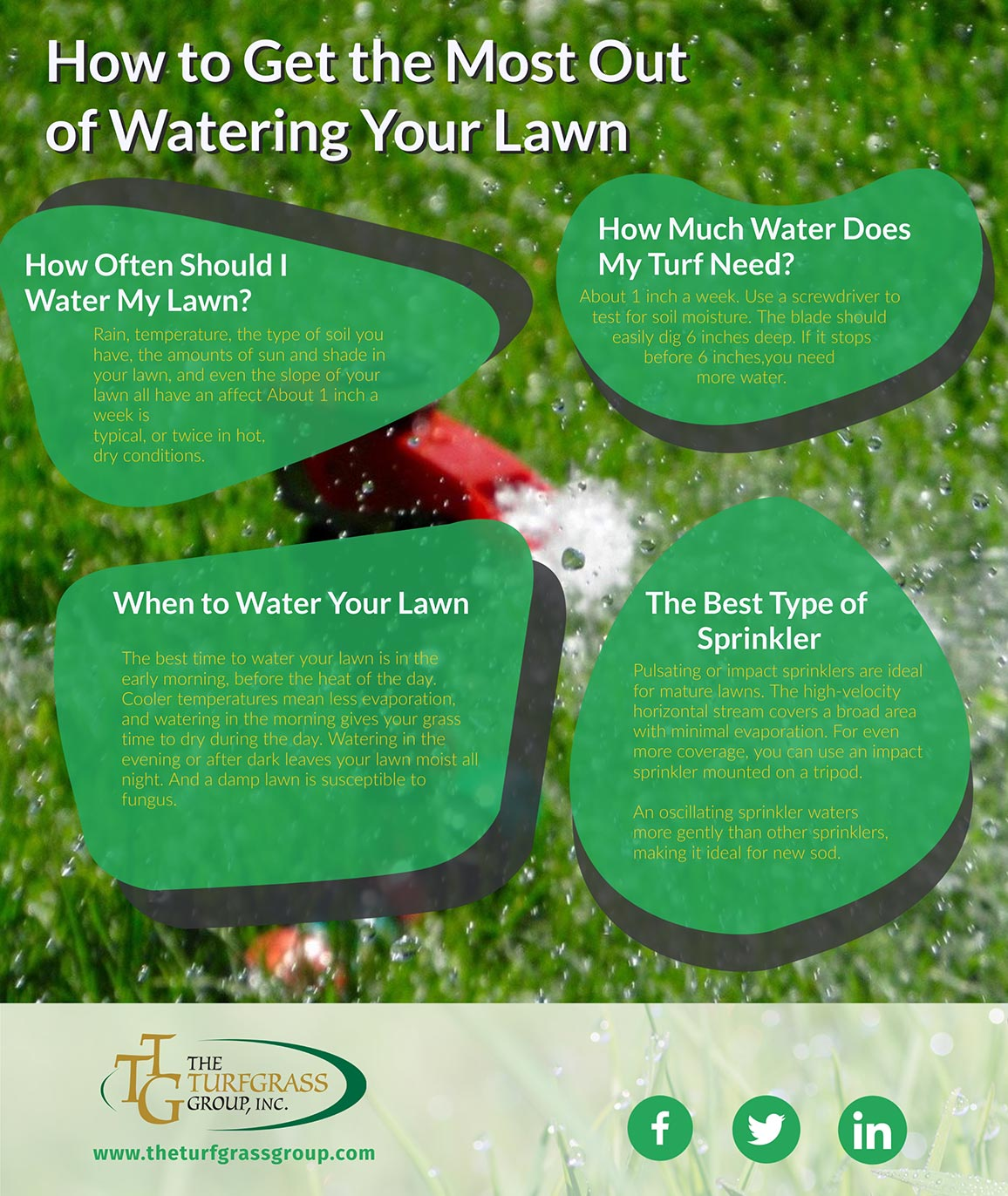 How to Get the Most Out of Watering Your Lawn [infographic]