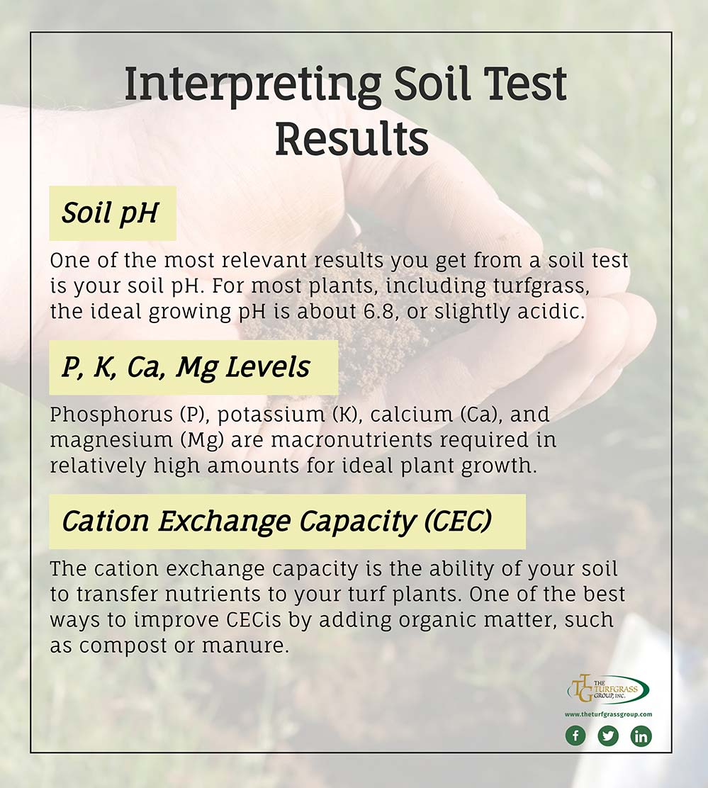 Everything You Need to Know About Soil Testing [infographic]