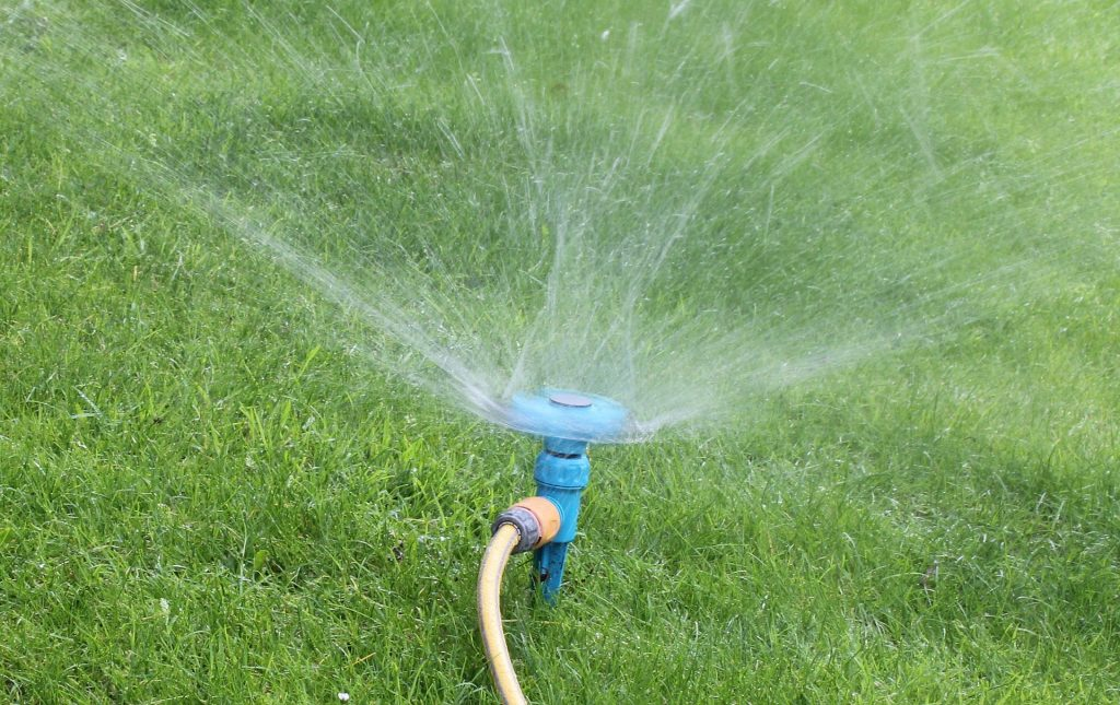 How to Use Less Water on Your Lawn