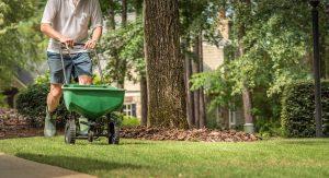 What Happens When You Fertilize Your Lawn