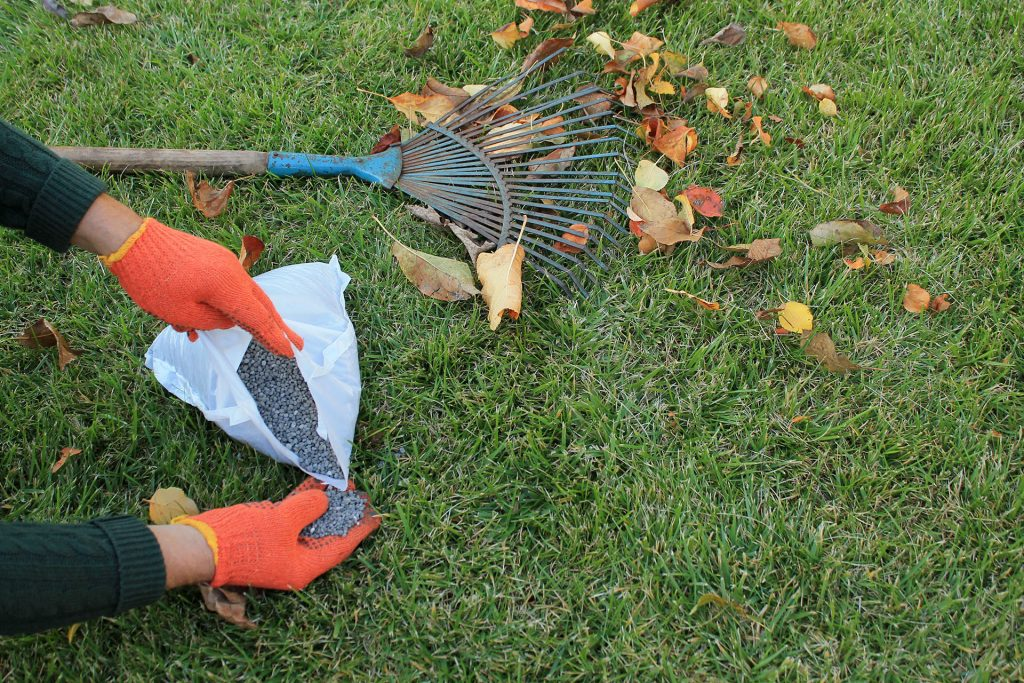 Fall Fertilizing for Your Lawn: The Ultimate Guide
