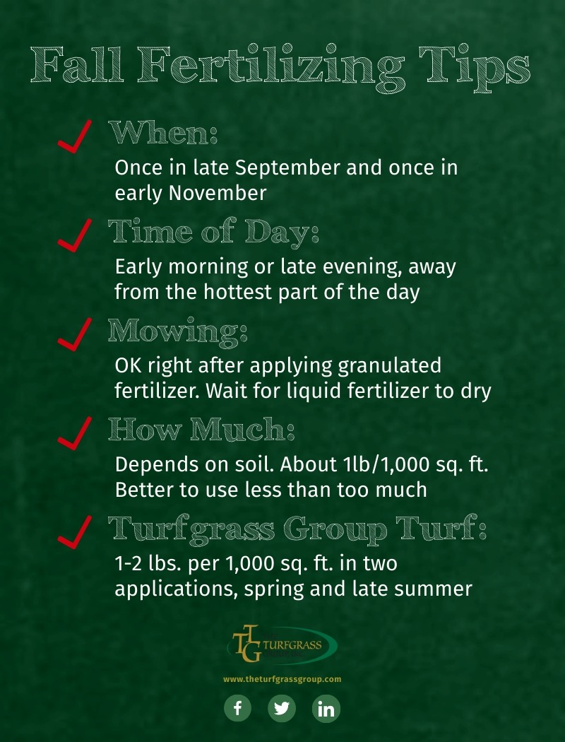 Fall Fertilizing for Your Lawn - The Ultimate Guide [infographic]