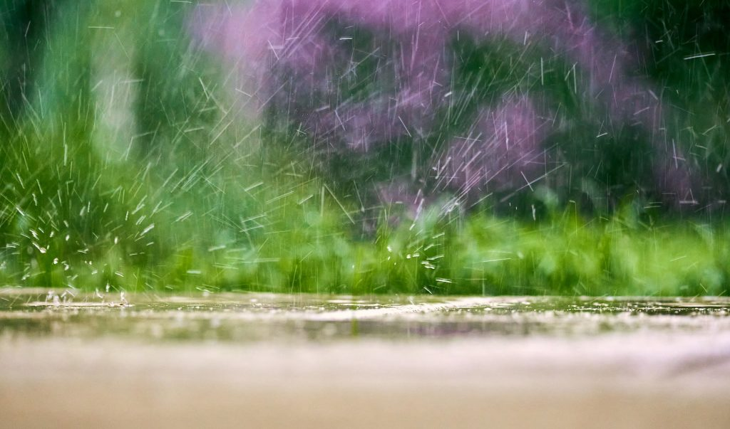 Efficient Irrigation for Your Lawn