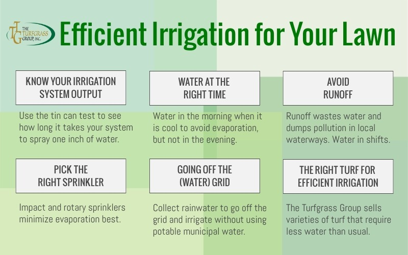Efficient Irrigation for Your Lawn [infographic]