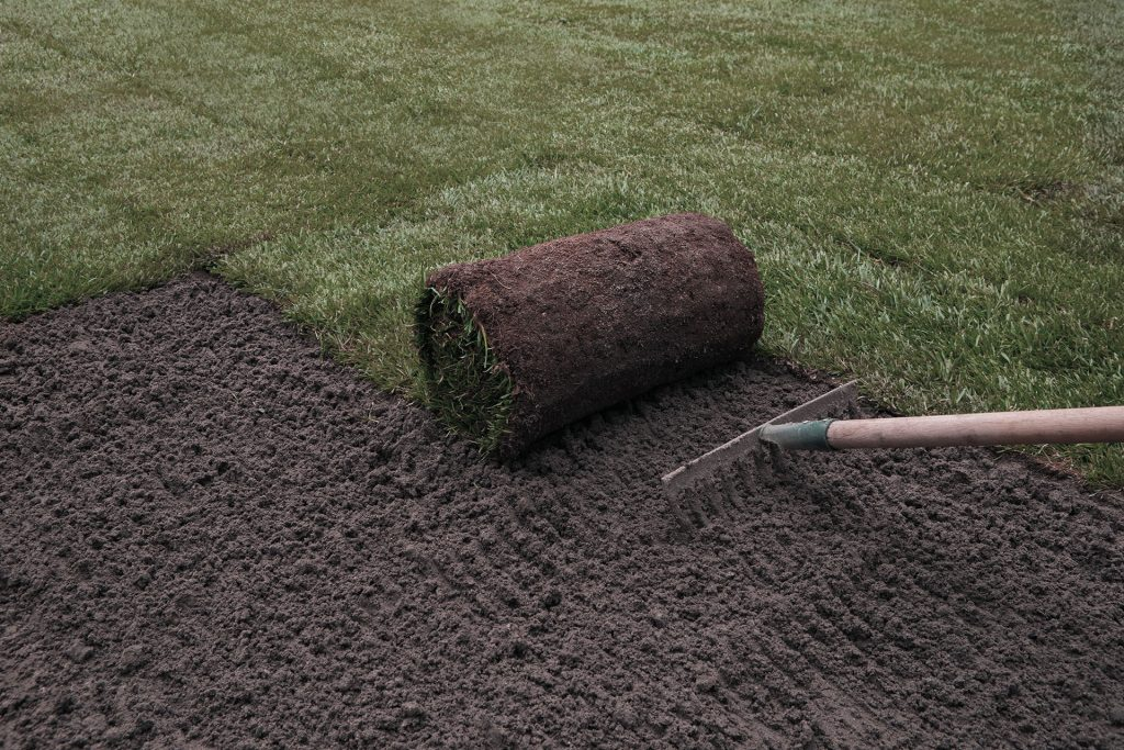 Can Sod Be Laid in Winter