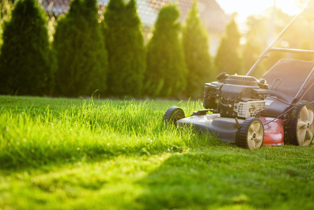 When to Start Mowing in the Spring | The Turfgrass Group Inc