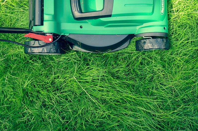 Achieving a Perfect Lawn