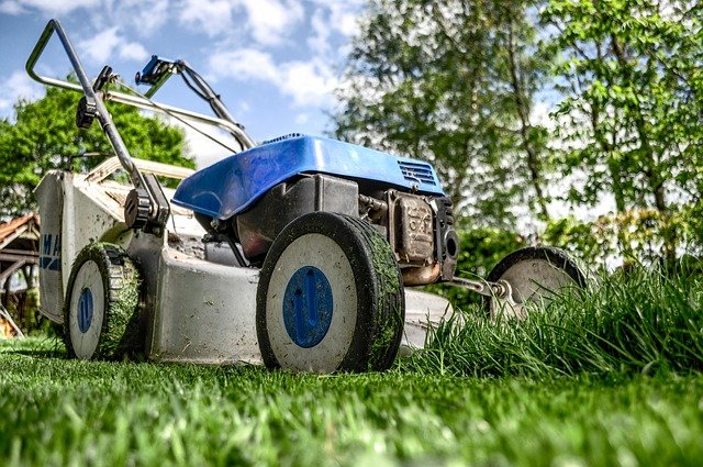 How To Care For Your Lawn As A Beginner