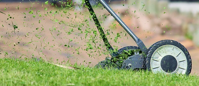 Lawn Mowing and Yard Maintenance: The Cheat-Sheet Version